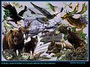Tipos de hombres, la fauna iberica
